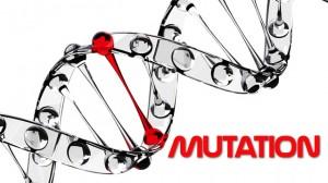 MTHFR Mutation