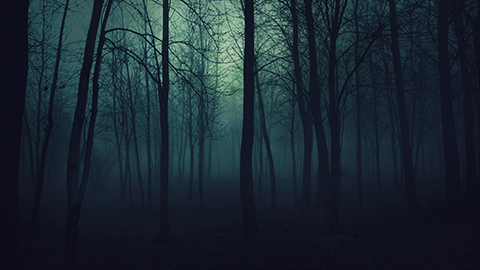 creepy-trees