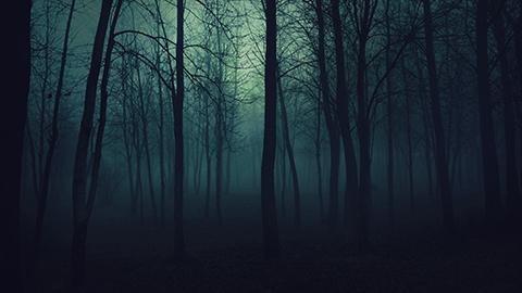 creepy-trees