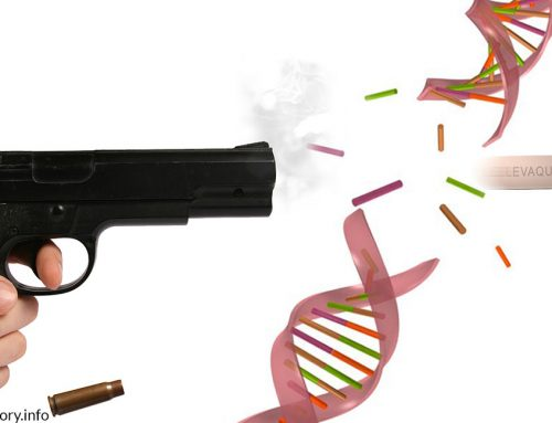 Pulling The Trigger: How the Fluoroquinolones Can Cause Mutations and Disease