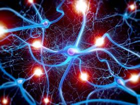 FQ Peripheral Neuropathy