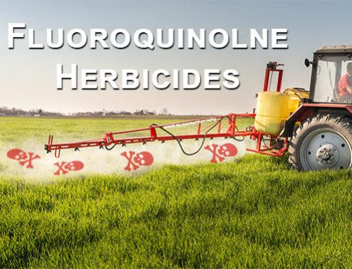 Fluoroquinolone Herbicides